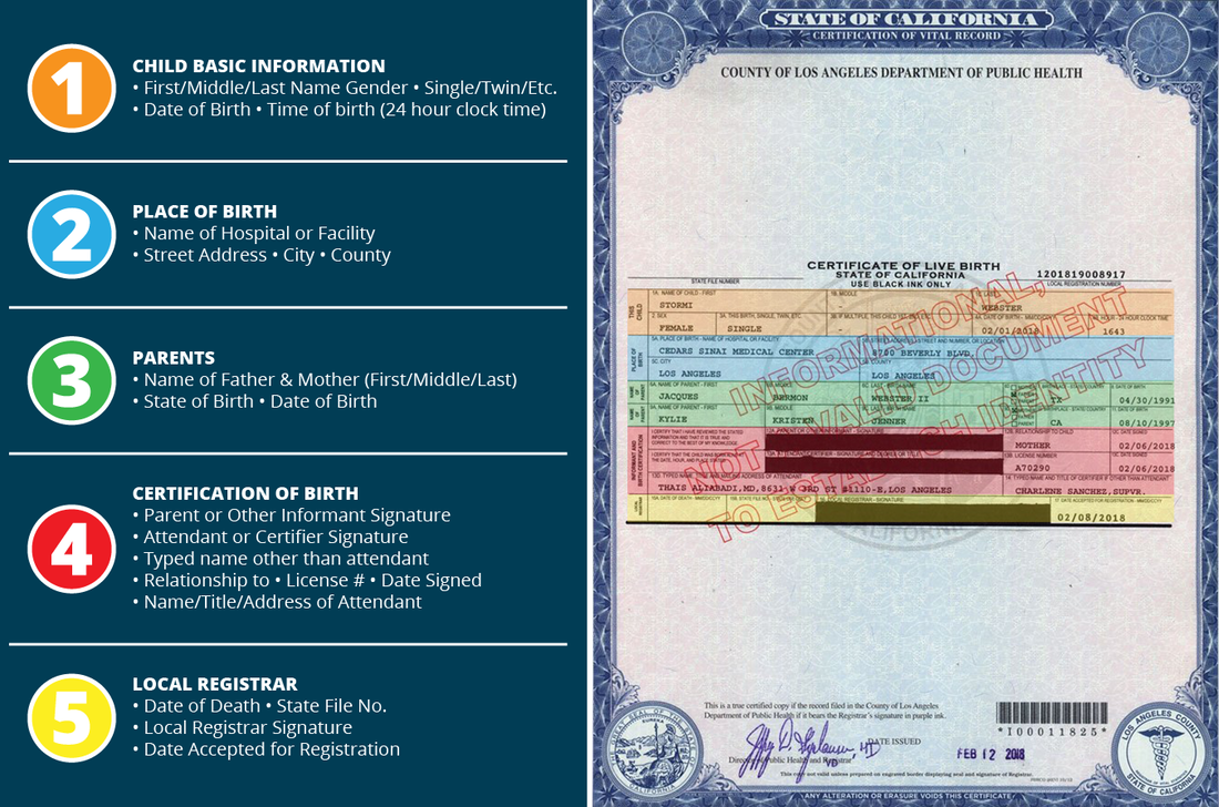 Breaking Down A Birth Certificate With The Kardashians